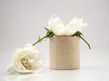 Wooden geometrical pieces with white roses Royalty Free Stock Image