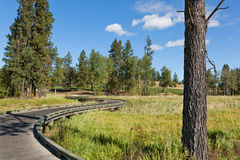 Wooden Golf Cart Path Bridge. A wooden golf cart pathway bridge curves around trees and over native grass wetlands at a natural golf course in Northern Idaho Royalty Free Stock Photography