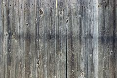 Wooden gray dark texture of the fence boards stock image