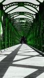 Wooden green bridge Stock Images