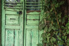 Wooden green door with a lock. Around is a lot of greenery. Early autumn royalty free stock image