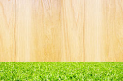 Wooden with green grass background Stock Photos