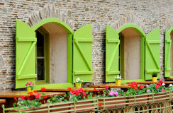 Wooden green house windows and flowers Stock Photo