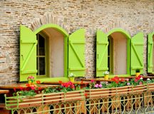 Wooden green house windows and flowers Royalty Free Stock Photos