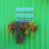 Wooden green painted boathouse facade, closed window with flower. Box Royalty Free Stock Photos