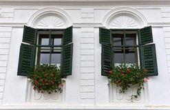Wooden green window shutters and red flowers Royalty Free Stock Photography