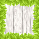 Wooden grey wall green leave Stock Images