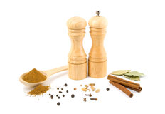 Wooden grinder and set of spices Royalty Free Stock Image