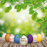 Wooden Ground Easter Eggs Green Nature Ostern. German text Frohe Ostern, translate Happy Easter stock illustration
