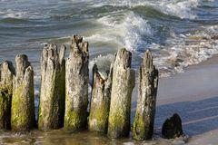 Wooden groyne on one of the beaches royalty free stock photo