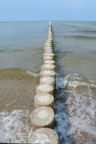 Wooden groyne and seagulls. Stock Photo