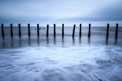 Wooden groynes Royalty Free Stock Images