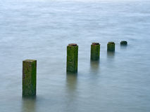 Wooden groynes stock photography