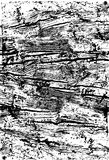 Wooden grungy lines texture background in black and white Royalty Free Stock Images