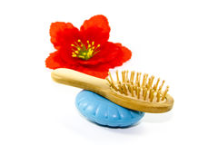 Wooden hairbrush with Blue Soap Stock Image