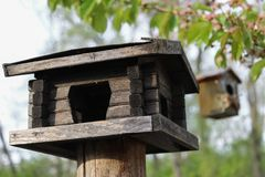 Lodge for birds, a feeding trough, the nesting box, on a tree in a garden, made with care, in the spring. Royalty Free Stock Images