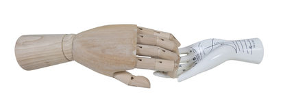 Wooden Hand and Palm Reading Model. A wooden hand with a ceramic palm reading hand model - path included royalty free stock photos