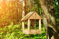 Wooden handmade bird feeder in form of little house Royalty Free Stock Photos