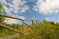 Wooden handrail of the natural walkway, directed upward, Newbold Quarry Park, UK. Wooden handrail of the natural walkway, directed upward, Newbold Quarry Park Royalty Free Stock Photos
