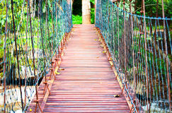Wooden hanging bridge in middle of woods Royalty Free Stock Image