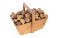 Wooden harvest basket walnuts Royalty Free Stock Image