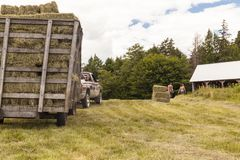 Wooden Hay Wagon Pulled by Truck in a Field stock photos