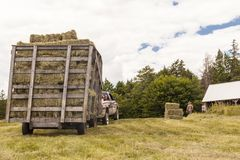 Wooden Hay Wagon Pulled by Truck in a Field royalty free stock image