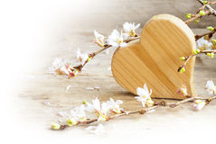 Wooden heart with blooming cherry branches on a rustic wood, lov Royalty Free Stock Image