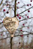 Wooden heart hanging from a tree. Wooden heart made of birch wood and bark hanging from a hawthorn Crataegus tree. It is late autumn, therefore there are no Stock Image