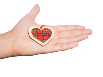 Wooden heart in his hand Royalty Free Stock Image