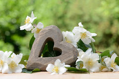 Wooden Heart and mock orange Royalty Free Stock Photo