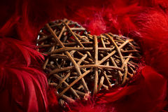Wooden heart in red feathers Royalty Free Stock Photography
