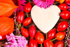 Wooden heart and rose hips Stock Images