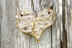 Wooden heart on tree Stock Image