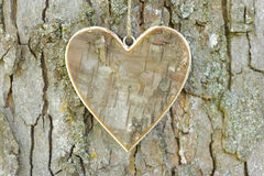 Wooden heart on tree Stock Images