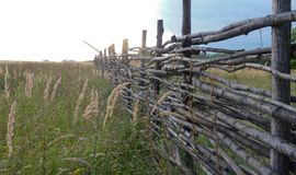 Wooden hedge in russian field. A wicker fence on the green field somewhere in russia, sunset stock image