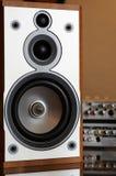 Wooden hi-fi loudspeaker. Close-up of wooden hi-fi loudspeaker (shallow DOF on cone stock photo