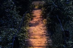 Wooden highlight footbridge at night in a fairy tale atmosphere. Pathway in the dark spooky forest in the moonlight.  stock image