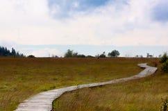 Wooden hiking path High Fens landscape Botrange Belgium Stock Photo