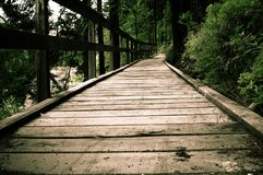 Wooden hiking path in the park Royalty Free Stock Photo