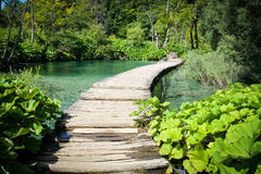 Wooden Hiking Trail Royalty Free Stock Photos
