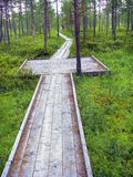 Wooden hiking trail. Royalty Free Stock Photos