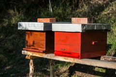 Wooden hive for bees, beekeeping, honey, health, healthy life. In natural stock photography