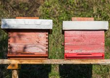 Wooden hive for bees, beekeeping, honey, health, healthy life. In nature royalty free stock image