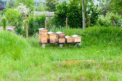 Wooden hives Stock Photo