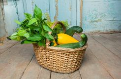 Wooden home with gardener basket and organic vegatables, zucchini and greens inside. Cozy village home at autumn season Royalty Free Stock Image