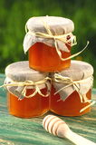 Wooden honey dipper and jars full of delicious fresh honey in apiary Stock Photo