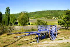 Wooden horse cart in a field of lavander at Provence France Royalty Free Stock Images