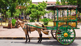 Wooden Horse Coach Transportation in Asia Royalty Free Stock Photography
