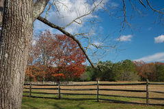 Wooden horse fence surrounding a large meadow with colorful autu Royalty Free Stock Photos